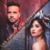 Luis Fonsi & Demi Lovato - Echame La Culpa (Victor Garcia Remix).mp3
