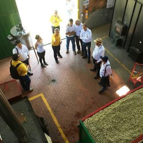 Centrales de beneficio de café, otra opción para la calidad y rentabilidad