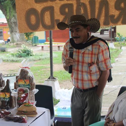 CrónicaSan Bernardo Proyectos
