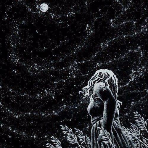 Let's Run Away & Swim With The Stars