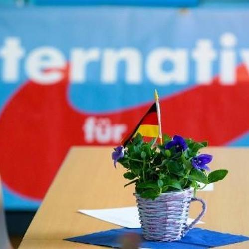 Michael Sturm - Geschichtspolitik als Kulturkampf – Die AfD und ihr Geschichtsverständnis