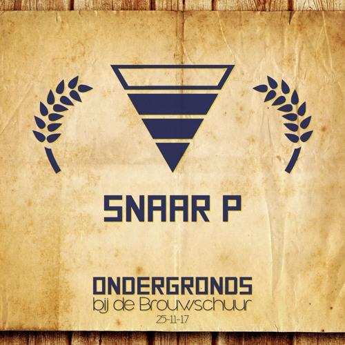 Snaar P @ Ondergronds bij de Brouwschuur 251117
