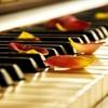 Relaxing Music Mix - BEAUTIFUL PIANO