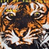 Survivor Eye Of The Tigerimaxx Remix 2k18tu00e9lu00e9chargement Gratuit Mp3