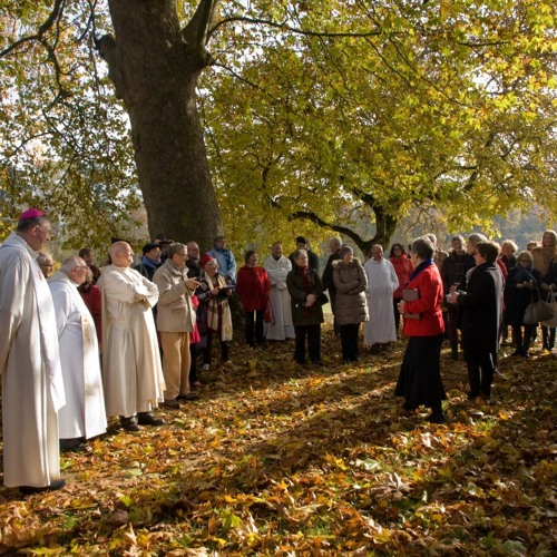 Laurence Freeman describes the blessing day