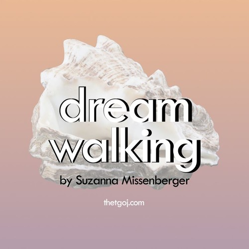 Dream Walking; Suzanna Missenberger