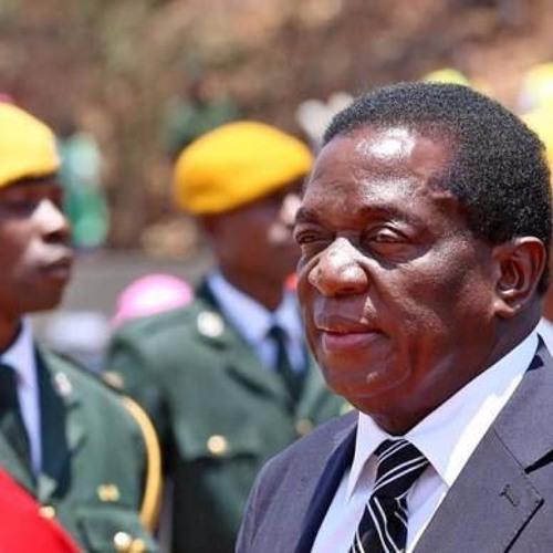 Zimbábue: novo líder quer indenizar fazendeiros após reforma agrária de Mugabe