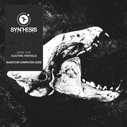 SYNT012 - Quantum Computer Code - Electric Particle EP