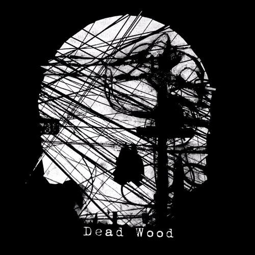 deadwood - My Brain (2methyl Remix)