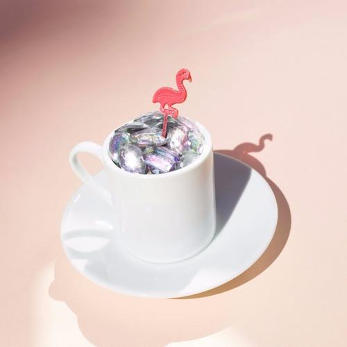 Pink Flamingo Rhythm Revue