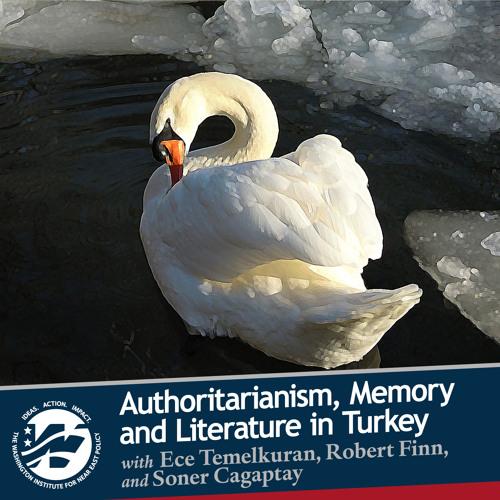 Authoritarianism, Memory, and Literature in Turkey