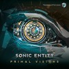 Sonic Entity & Zyce - What Can We Do (Original Mix)