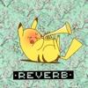 •Reverb•