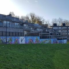 Central Hill Estate - life