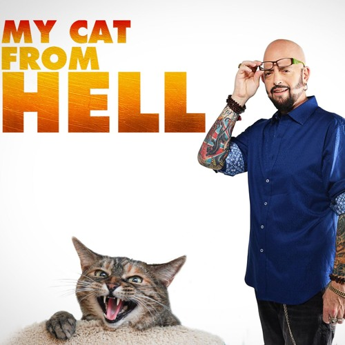 Jackson Galaxy of 'My Cat From Hell' & 'Cat Vs. Dog' on Animal Planet