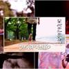 Luis Fonsi Ft. Daddy Yankee (KOLOTAN Band Cover)