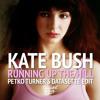 Kate Bush - Running Up The Hill (Petko Turner's Datassette Edit)