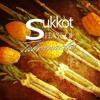 HHMI ~ Sukkot ~ Season of our Joy ~ Pt 3 ~ Raising up the Tabernacle of David