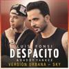 Luis Fonsi - Despacito Feat. Justin Bieber (Muffin Remix)