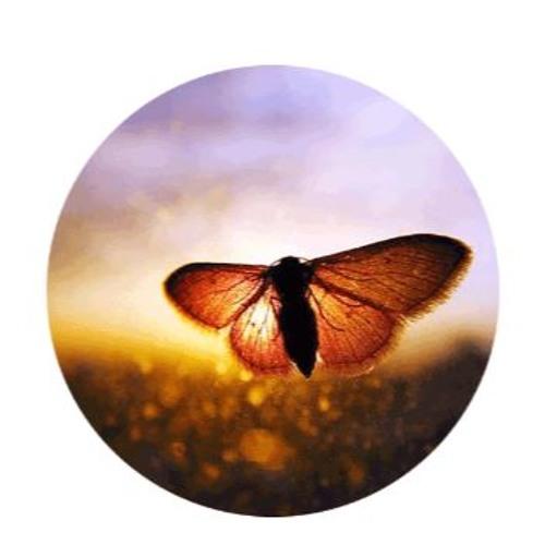 TreeSisters Global Healing Meditation ~ Shine Your Light