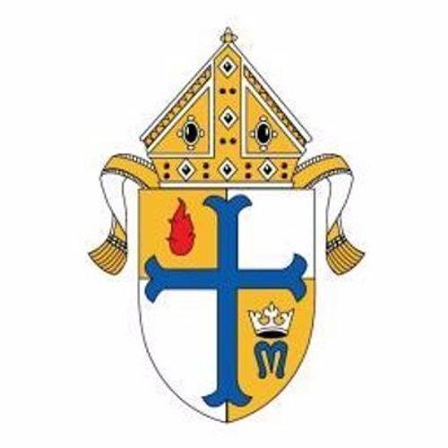 Diocesan Spotlight - Metuchen  11/27/17