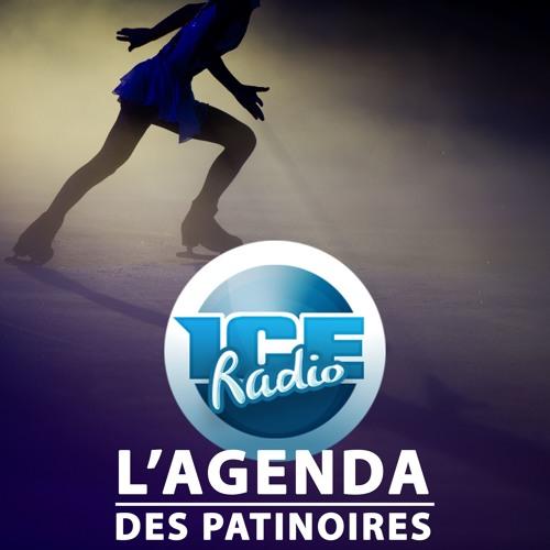 L'AGENDA DES PATINOIRES semaine 48