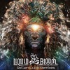 Liquid Bloom - Fire Gathering (Land Switcher Remix)