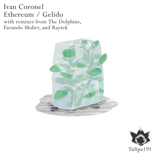 Ivan Coronel - Ethereum (The Dolphins Remix)