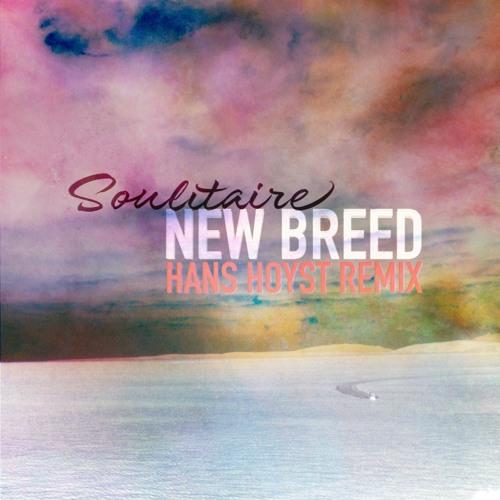 New Breed (Hans Hoyst Remix)