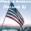 Made In America (Volume 2)
