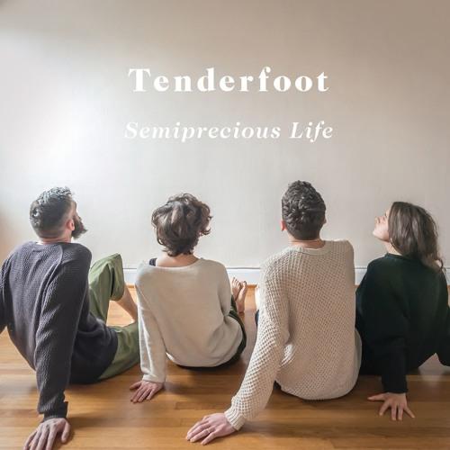 Semiprecious Life