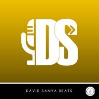 Beast➡DavidSanyaBeats.com║Justin Bieber, Rihanna AfroBeat Dancehall Type Beats║Afro R&B Instrumental