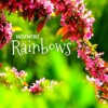 Rainbows - Beautiful Uplifting Piano Background Music for Video