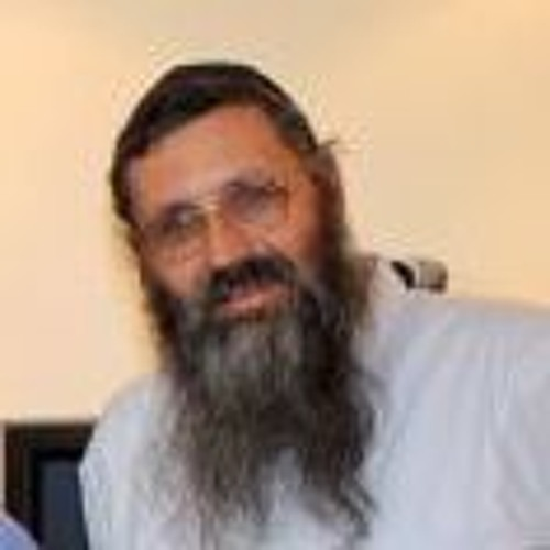 הרב מיכאל אברהם - שיעור 5 - שניים אוחזין