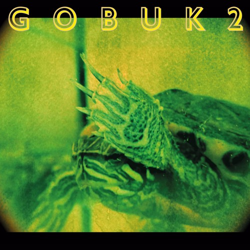 GOBUK2 - Hello, We are the coolest turtles