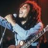 Bob Marley :: War / No More Trouble :: Live 78