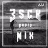 Best Mix of EDM & Dance - Músicas Eletrônicas - Esck Radio Mix 020