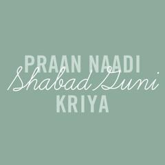 Praan Naadi Shabad Guni Kriya (Preview)