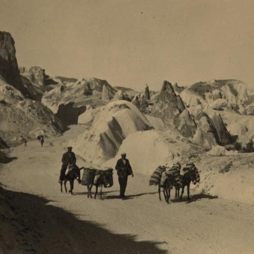 The Tanzimat in Ottoman Cappadocia | Aylin de Tapia