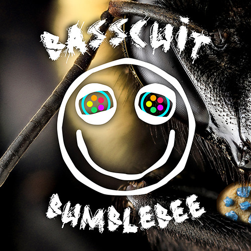 Basscuit - Bumblebee 🐝🌸(Extended Mix)
