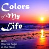 Colors of My Life