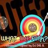 WHAT THE FUNK? ....... old school funk, disco, soul