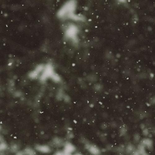 On A Winter Night