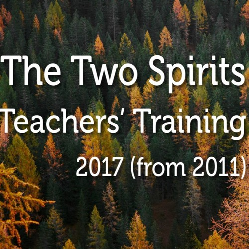 Teachers' Training 2017