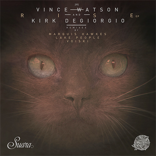 Vince Watson & Kirk Degiorgio - Variable Slope (Voiski Remix)