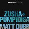 Baruch Hashem (feat. Zusha & Pumpidisa)