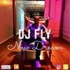 Dj Fly - Reggaeton Criminal