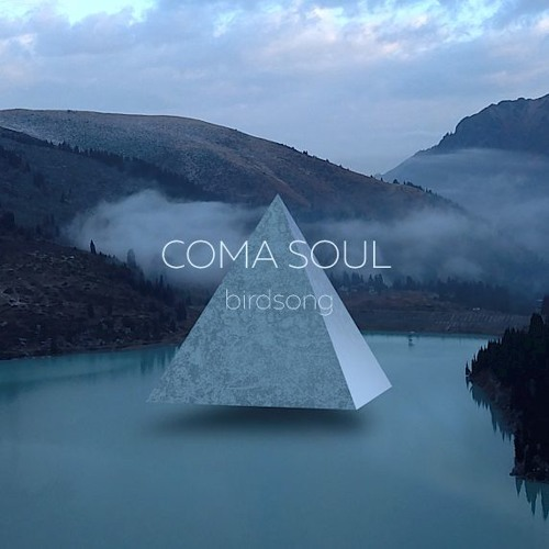 Coma Soul - Birdsong | indie electronic | melodic deep techno
