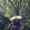 Naff - Akhirnya Ku Menemukanmu - Live Cover By Nufi Wardhana Youniv3rse