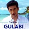 Gulabi Aankhen - Sanam